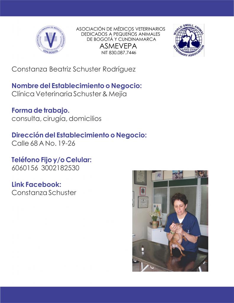 https://vepabogota.com/wp-content/uploads/2019/03/Constanza-Beatriz-Schuster-Rodríguez-791x1024.png
