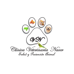 Clinica veterinaria nacer